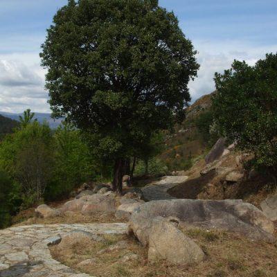Historia de Galicia5